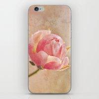 Pretty Little Rosebud. iPhone & iPod Skin