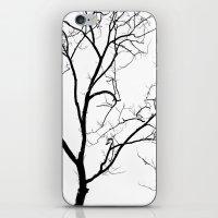 Tree Silhouette iPhone & iPod Skin