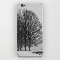 The Gathering iPhone & iPod Skin