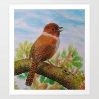 A Brown Bird Art Print