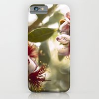 iPhone & iPod Case featuring Botanical  by dibec