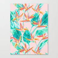 Birds Of Paradise Blush Canvas Print