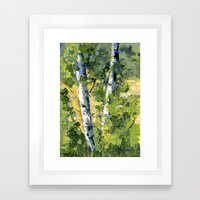 Aspens - Ready to Turn Yellow... Framed Art Print