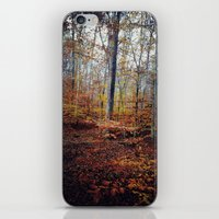 Explore Color iPhone & iPod Skin
