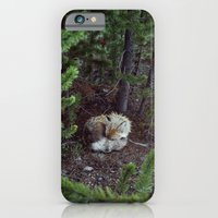 iPhone & iPod Case featuring Sleeping Fox by Kevin Russ