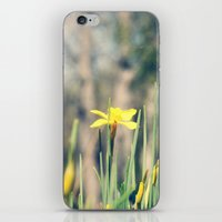 First Hint of Spring iPhone & iPod Skin