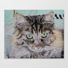 Fran the Tabby Cat Canvas Print