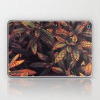 Leaves Evolved 5 Laptop & iPad Skin