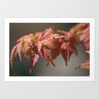 A Sign Of Fall Art Print