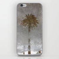 Rainy Day Palm Tree iPhone & iPod Skin
