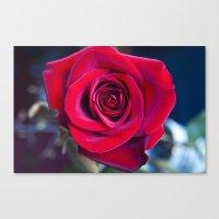 MAGIC ROSE Canvas Print