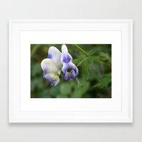 Pop of Purple Framed Art Print