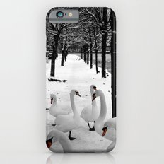 Swans in the snow iPhone 6 Slim Case