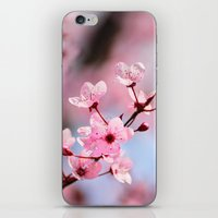 Pink spring...... iPhone & iPod Skin