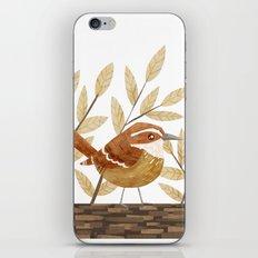 Carolina Wren iPhone & iPod Skin