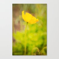 Dreamy Impressions Canvas Print