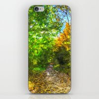 Autumnal Forest Path Art iPhone & iPod Skin