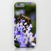 iPhone & iPod Case featuring Bee on lavander by CarP