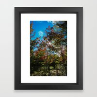 Blue Skies Above Me, Autumn Leaves Surround Me Framed Art Print