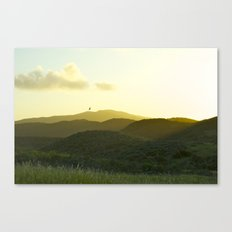 California Soaring Canvas Print