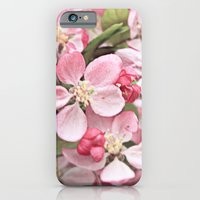 iPhone & iPod Case featuring Cherry Blossoms by Ginger Mandy