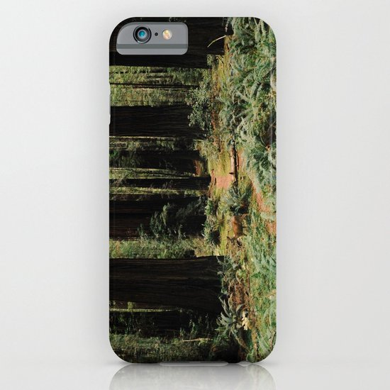 Deer in Redwood Forest iPhone & iPod Case
