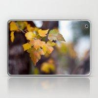 Autumn Yellow Laptop & iPad Skin