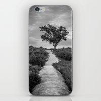 Windswept Tree at Fort Fisher NC -- Black and White Coastal Landscape iPhone & iPod Skin