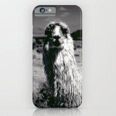 Peru Journey NO2 Slim Case iPhone 6s