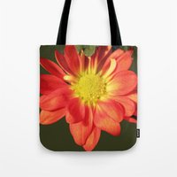 Pretty holiday orange daisy flower. Floral nature garden photography. Tote Bag