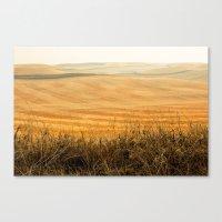 Golden Fields After Harv… Canvas Print