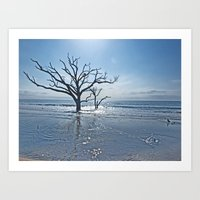 Natural Beach Art Print