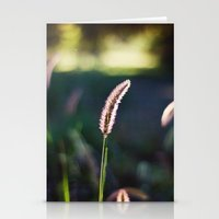 Autumn Grass II Stationery Cards