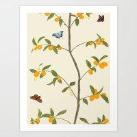 Jenny Chinoiserie Kumqua… Art Print