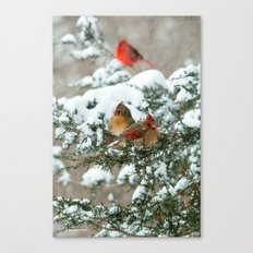 After The Snow Storm: Th… Canvas Print