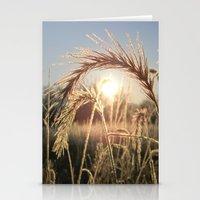 Wheat Sunrise Stationery Cards