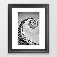 Ammonite Framed Art Print