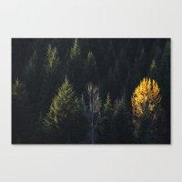 Fall at Trillium Lake, OR Canvas Print