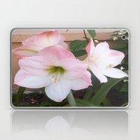 My Aunt's Flowers 1  Laptop & iPad Skin