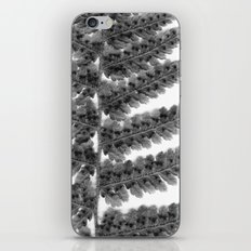 Fern Frond iPhone & iPod Skin