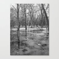 Ice swamp Canvas Print