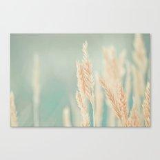 Magical Field Canvas Print