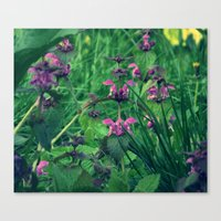 Canvas Print featuring They say it's a weed by Ioana Stef