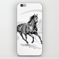 Master Hand (USA) Thoroughbred Stallion iPhone & iPod Skin