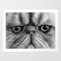 Persian Cat B&W 831 Art Print