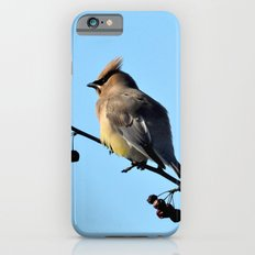 Waxwing on a Winter's Day Slim Case iPhone 6s