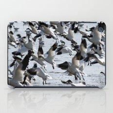 Oie des neiges - Snow Goose - ganso blanco iPad Case
