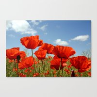 Fields Of Poppy Happines… Canvas Print