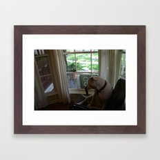 Dawg: 4 Framed Art Print