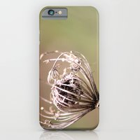 iPhone & iPod Case featuring Simplicity by NC Stewart